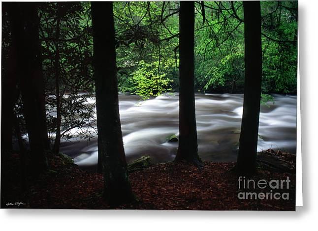 Smoky Mountain Stream #2  2009 Greeting Card