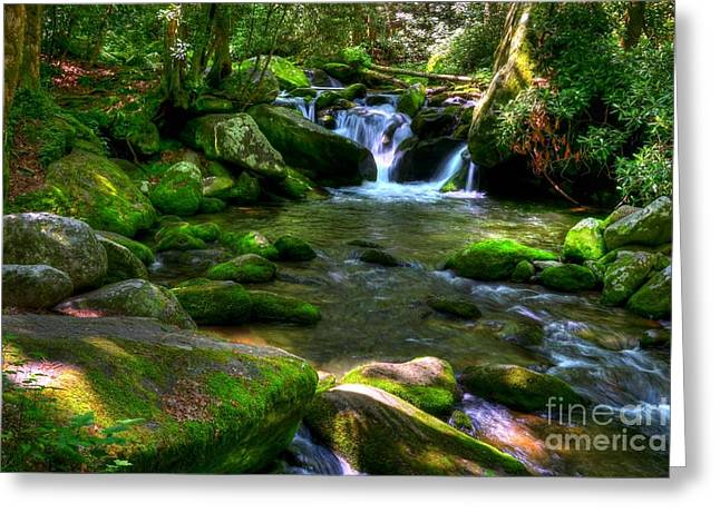Smoky Mountain Stream 3 Greeting Card by Mel Steinhauer