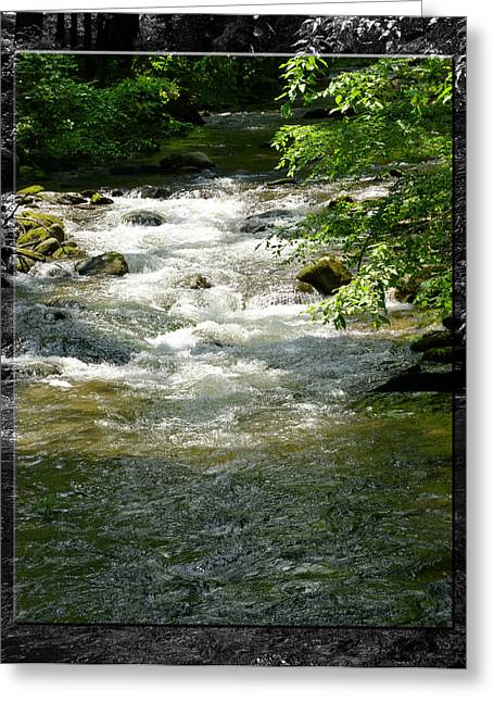 Smoky Mountain Stream - B Greeting Card by Robert Clayton