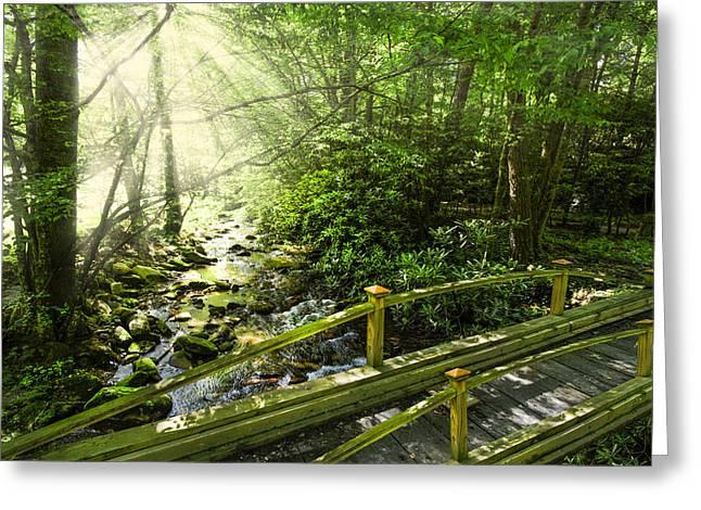 Smoky Mountain Stream Greeting Card by Debra and Dave Vanderlaan