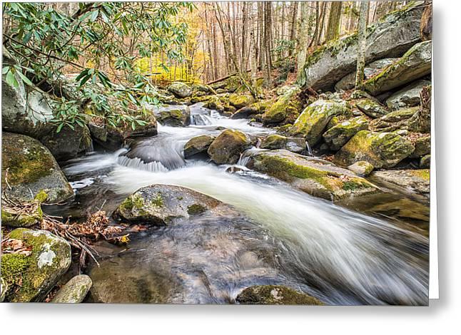 Smoky Mountain Stream 4 Greeting Card