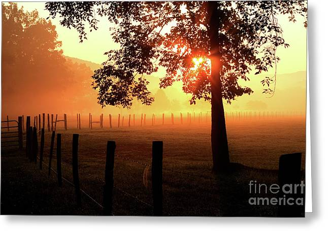 Smoky Mountain Sunrise Greeting Card by Douglas Stucky
