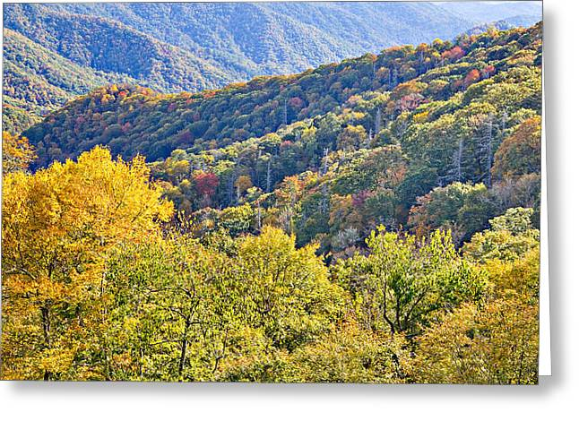Smoky Mountain Valley Greeting Card