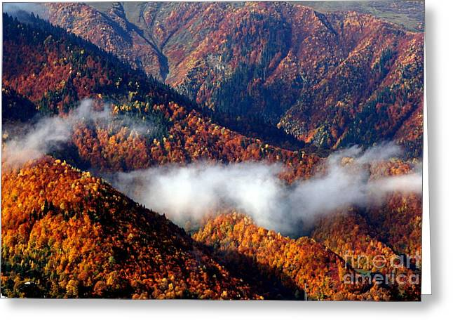 Smoky Mountains Greeting Card by Arie Arik Chen