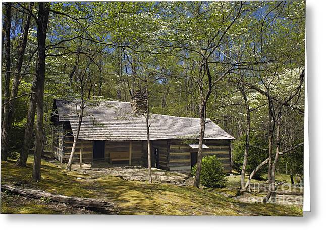 Smoky Mountains Hiking Club Cabin - D008449 Greeting Card by Daniel Dempster