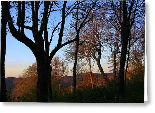 Smoky Mountains North Carolina Greeting Card by Mountains to the Sea Photo