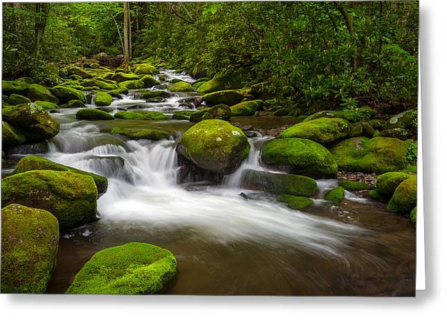 Smoky Mountains Paradise - Great Smoky Mountains Gatlinburg Tn Greeting Card by Dave Allen