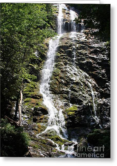 Smoky Mountains Waterfall Greeting Card by Jerry Bunger