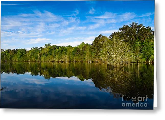 Smooth Reflection Greeting Card