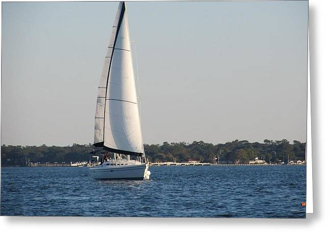 Smooth Sailing Carolina Greeting Card by Joetta Beauford