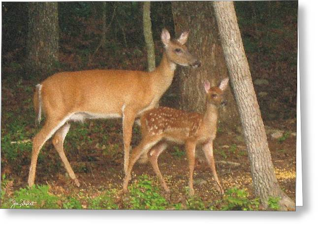 Smudgie And Fawn Pastel Greeting Card