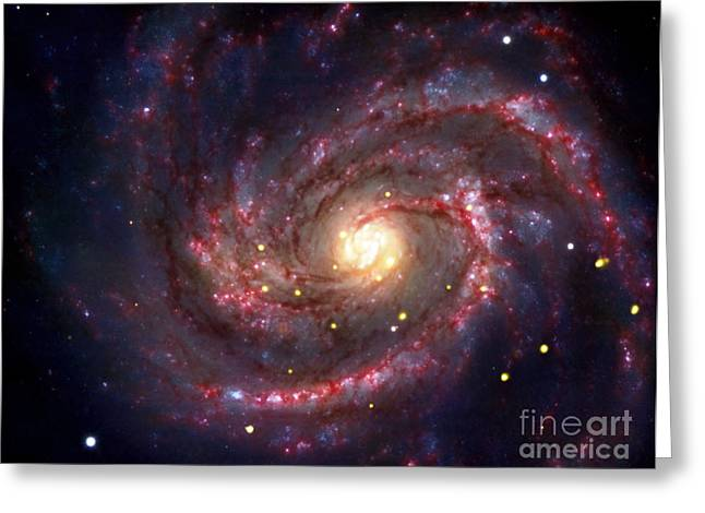 Sn 1979c, Supernova In M100 Galaxy Greeting Card