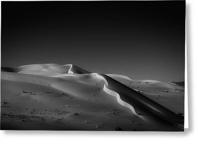 Snake Dune Greeting Card by Peter Tellone