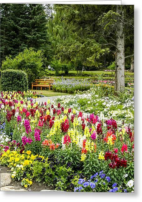 Snapdragon Garden Greeting Card
