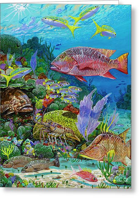 Snapper Reef Re0028 Greeting Card by Carey Chen