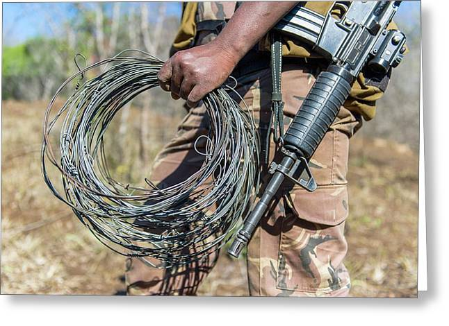 Snares Found In Anti-poaching Patrol Greeting Card