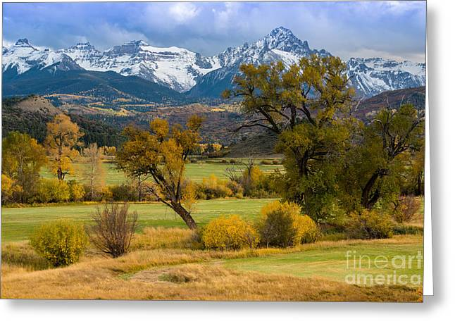 Sneffels Fall Cattle Ranch - Ridgway - Co Greeting Card by Gary Whitton