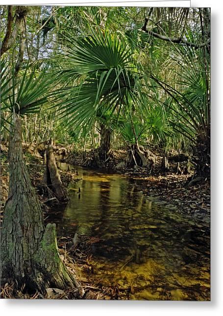 Snell Creek. Osceola County Florida Greeting Card