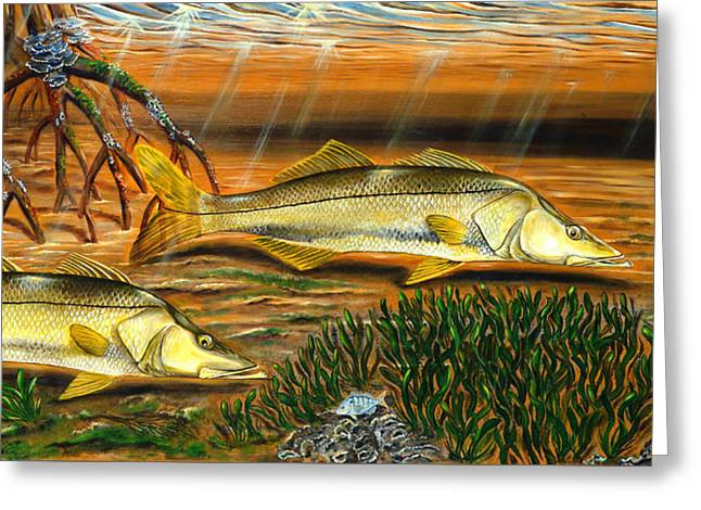 Snook In The Mangroves Greeting Card by Steve Ozment