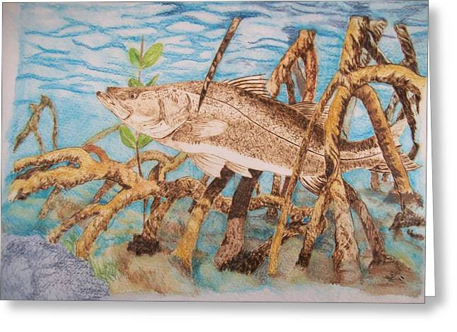 Snook Original Pyrographic Art On Paper By Pigatopia Greeting Card by Shannon Ivins