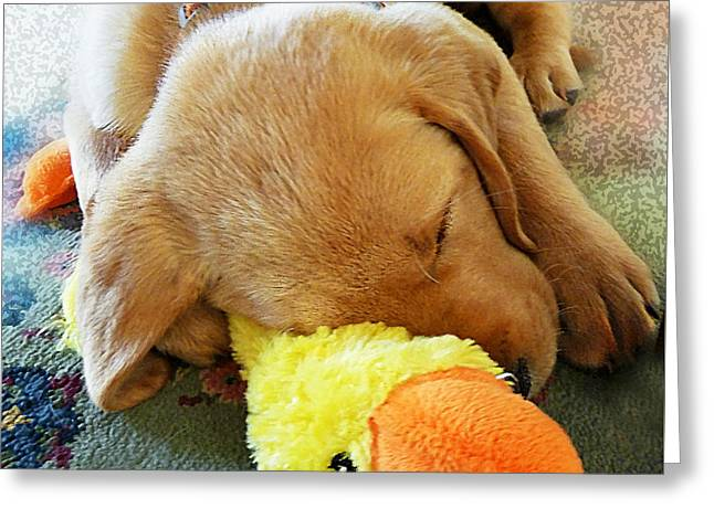 Snoozing With My Duck Fell Asleep On A Job Puppy Greeting Card