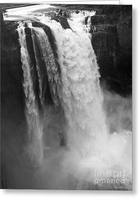 Snoqualmie Falls - Black And White Greeting Card by Carol Groenen