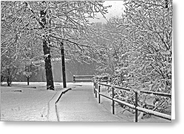 Greeting Card featuring the photograph Snow Along The Path by Andy Lawless