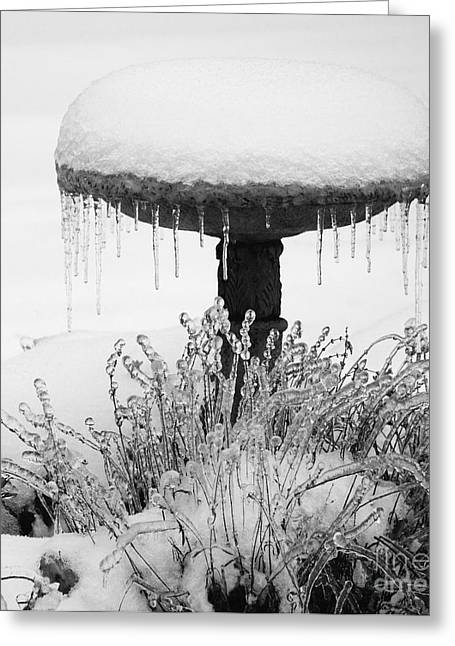 Snow And Ice Served-up Greeting Card