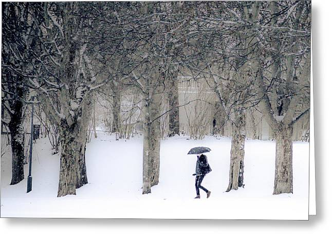 Woman With Umbrella Walking In Park Covered With Snow Greeting Card