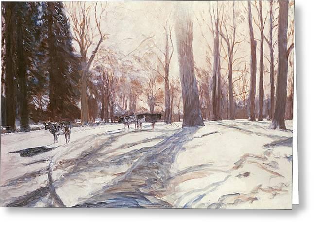 Snow At Broadlands Greeting Card by Paul Stewart