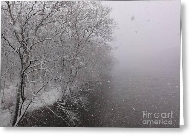 Snow At Bulls Island - 12 Greeting Card