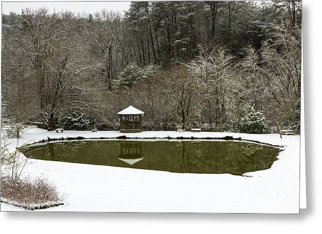 Snow At The Pond Greeting Card