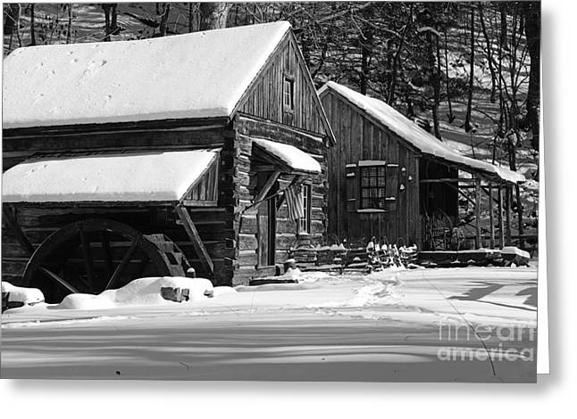 Snow Bound In Black And White Greeting Card