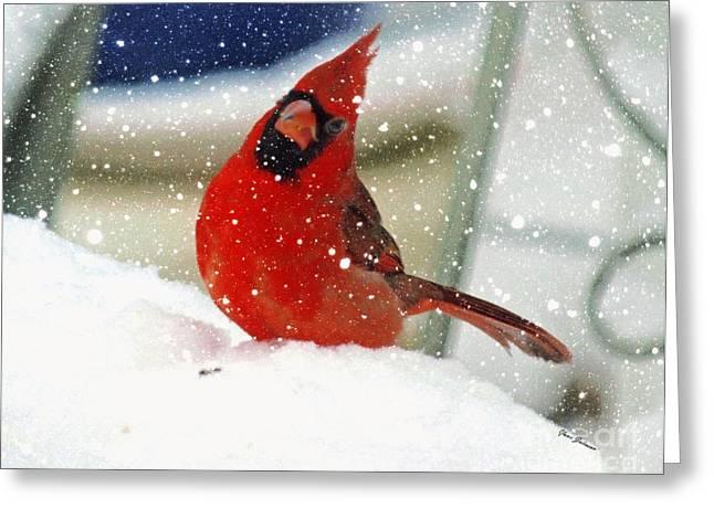 Snow Cardinal Greeting Card by Yumi Johnson