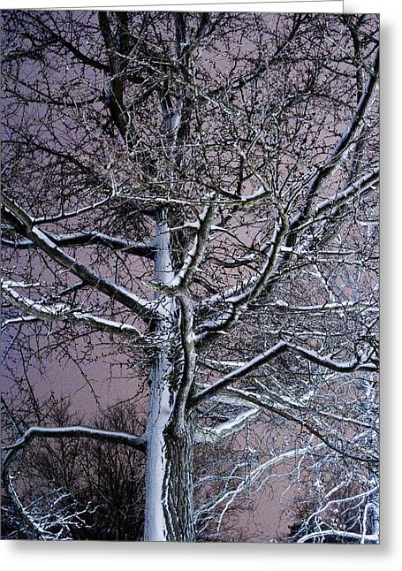 Snow Coat Greeting Card by Joe Scott