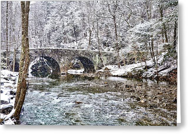 Snow Coming Down On The Wissahickon Creek Greeting Card by Bill Cannon