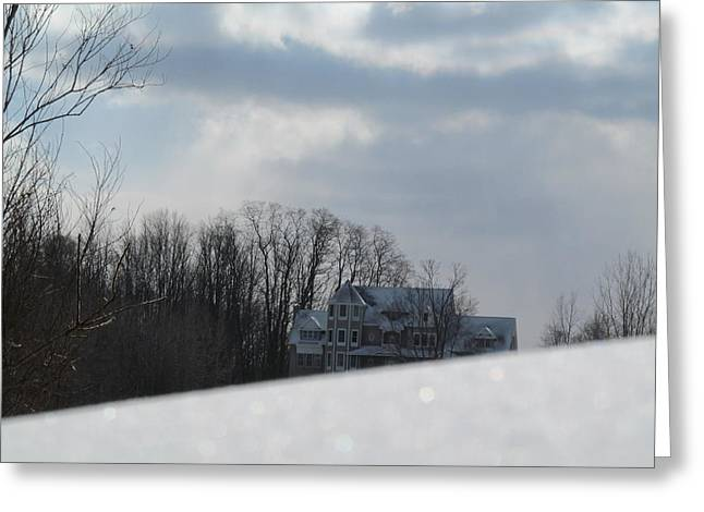 Snow Covered Driveway Greeting Card by Tina M Wenger