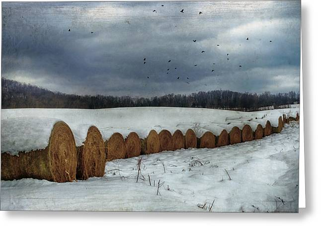 Snow Covered Hay Bales Greeting Card by Kathy Jennings