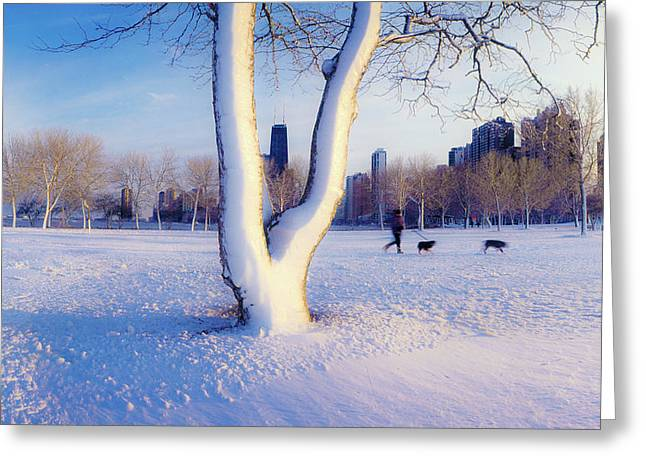 Snow Covered Lakefront Park In Winter Greeting Card