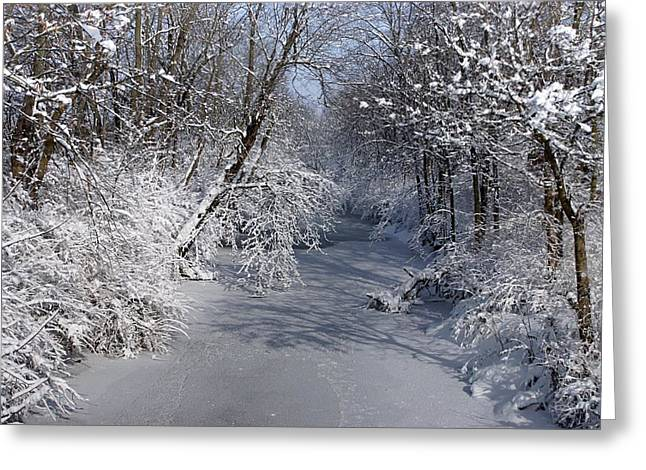 Snow Covered River Greeting Card by Thomas Fouch