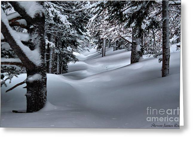 Greeting Card featuring the photograph Snow Covered Trail by Steven Reed