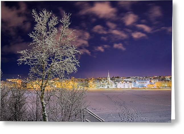 Snow Covered Trees And Frozen Pond Greeting Card by Panoramic Images