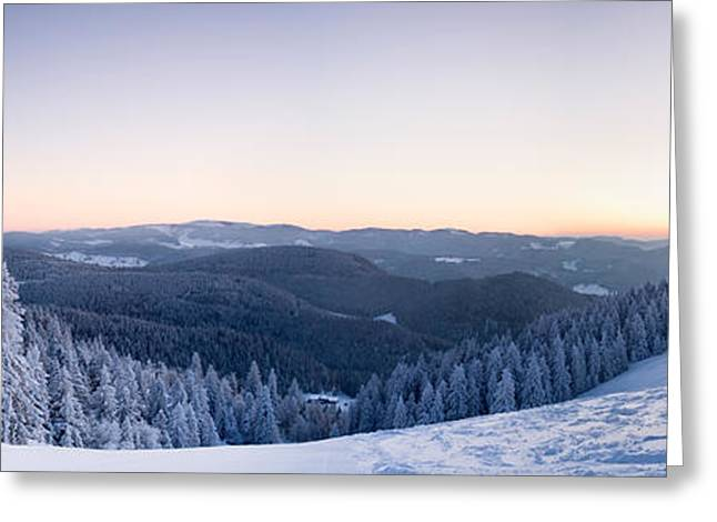 Snow Covered Trees On A Hill, Belchen Greeting Card by Panoramic Images
