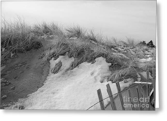 Snow Covered Sand Dunes Greeting Card