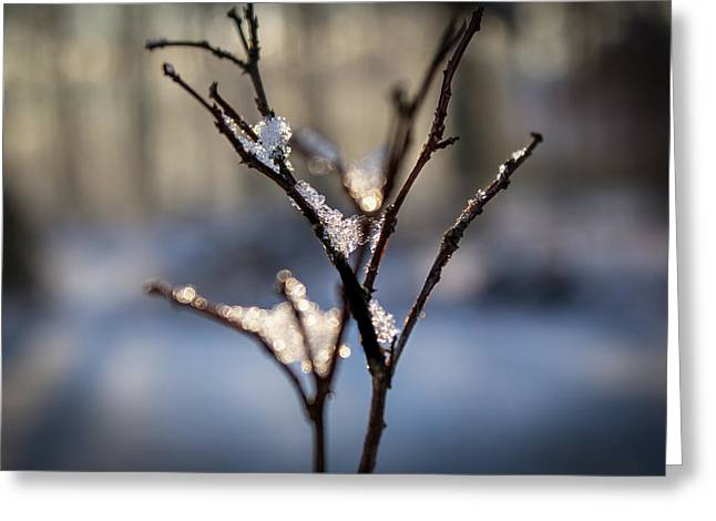 Greeting Card featuring the photograph Snow Crystal Sunrise by Glenn DiPaola