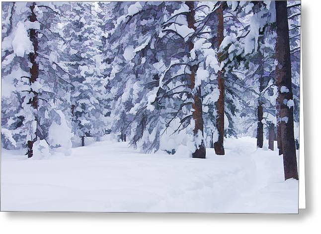 Snow-dappled Woods Greeting Card