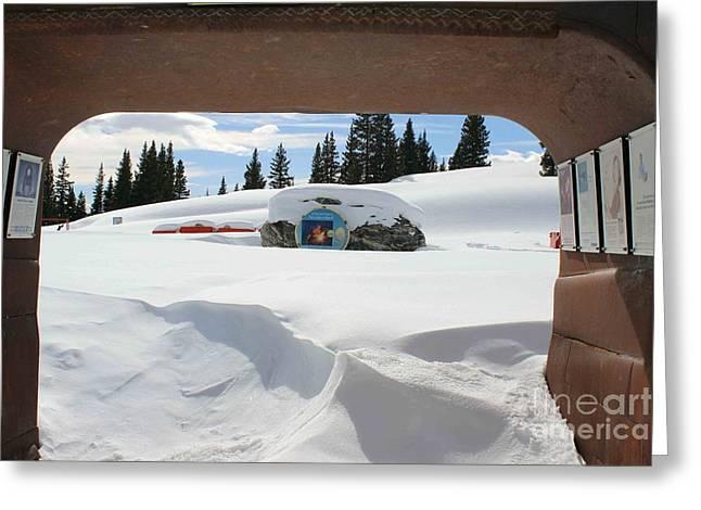 Snow Daze Greeting Card by Fiona Kennard