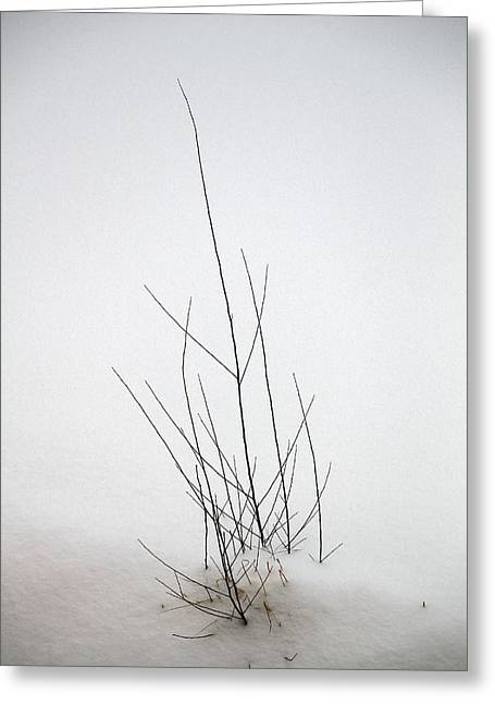 Snow Drifts In Mongolia Greeting Card