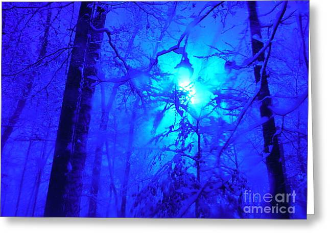 Snow Flying Everywhere Greeting Card by Paddy Shaffer