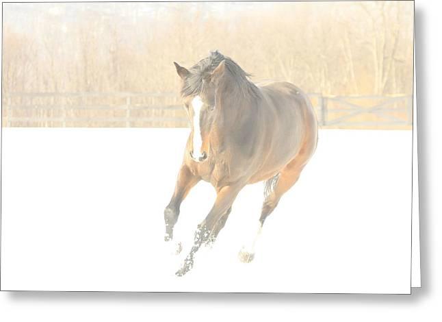 Greeting Card featuring the photograph Snow Fun by Carol Lynn Coronios